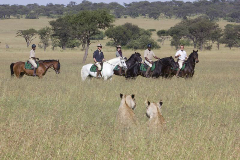 wilderness riding experience at kenya's ol Donyo Lodge