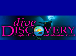Dive Discovery